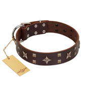 """Stars in Sands"" Modern FDT Artisan Brown Leather Amstaff Collar with Studs and Stars"