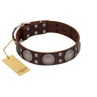 """Sun in Barchans"" Modern FDT Artisan Brown Leather Amstaff Collar with Engraved Stars on Round Plates and Studs"