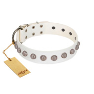 """Grandeur Dog"" FDT Artisan White Leather Amstaff Collar with Engraved Studs"