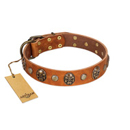 """Call of Feat"" FDT Artisan Tan Leather Amstaff Collar with Old Bronze-like Studs and Oval Brooches"