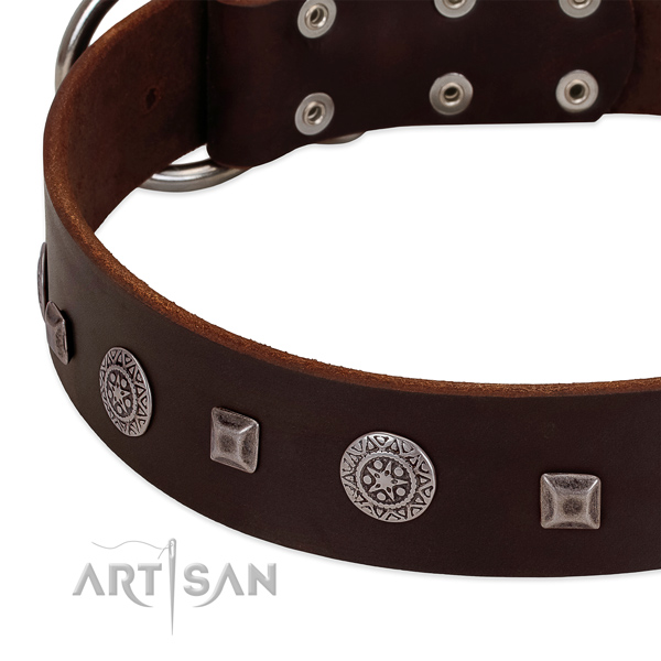 Leather dog collar with durable elements for safe canine handling