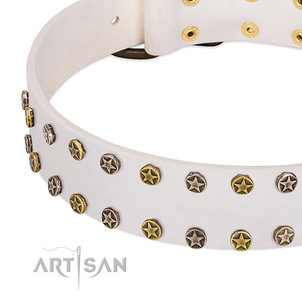 Awesome adornments on genuine leather collar for your canine