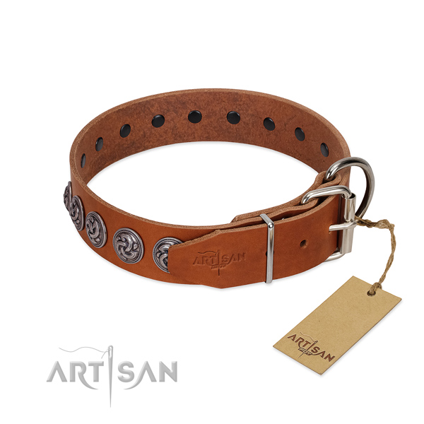 Corrosion resistant hardware on leather dog collar for stylish walking your dog