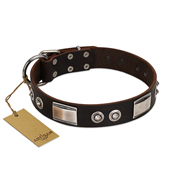 """Baller Status"" FDT Artisan Brown Leather Amstaff Collar Adorned with a Set of Chrome Plated Studs and Plates"
