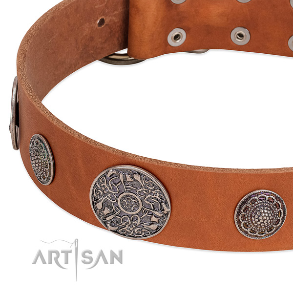 Corrosion resistant adornments on full grain genuine leather dog collar