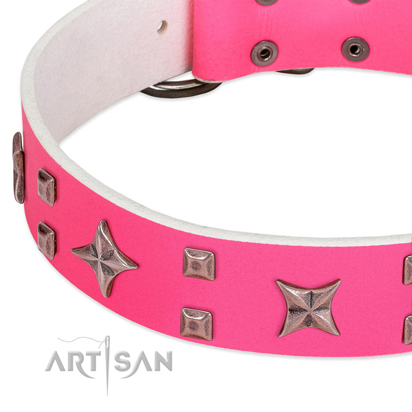 Reliable fittings on genuine leather collar for stylish walking your pet