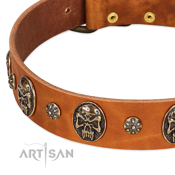 Reliable embellishments on natural genuine leather dog collar for your dog