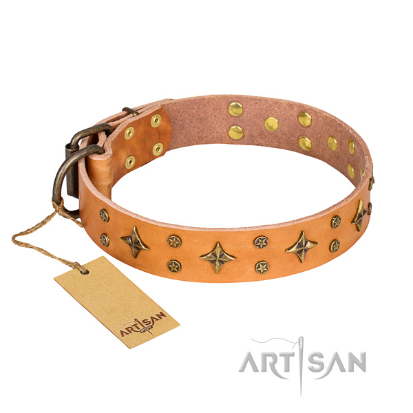 Handy use dog collar of finest quality genuine leather with adornments