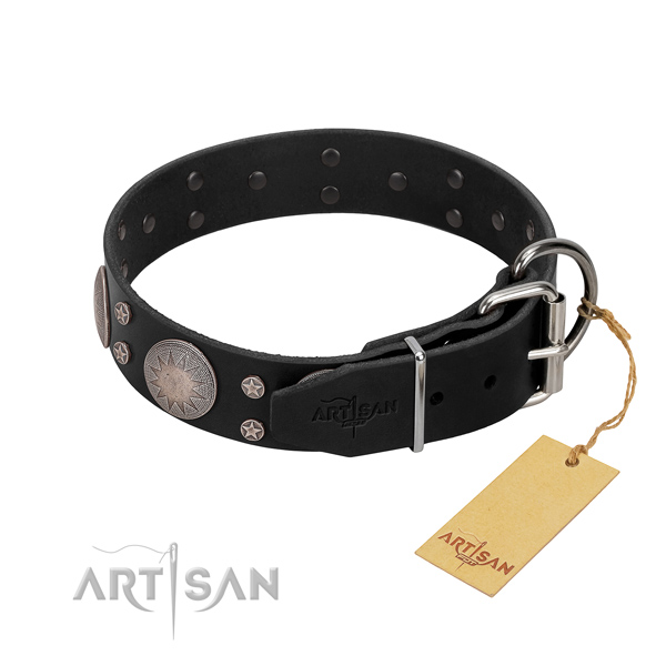 Unique embellishments on full grain leather dog collar for stylish walking