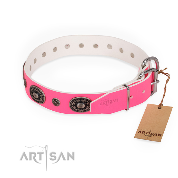 Daily use studded dog collar with corrosion proof hardware