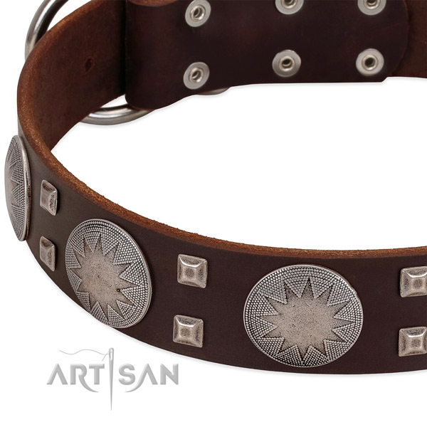 Fancy walking high quality full grain natural leather dog collar