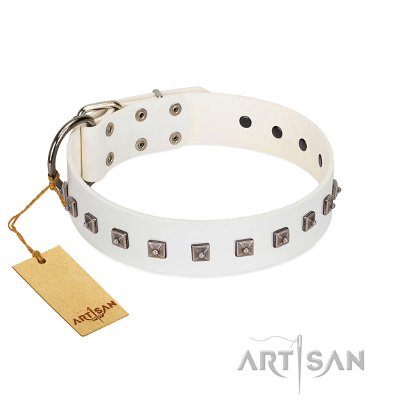 Inimitable studded natural leather dog collar