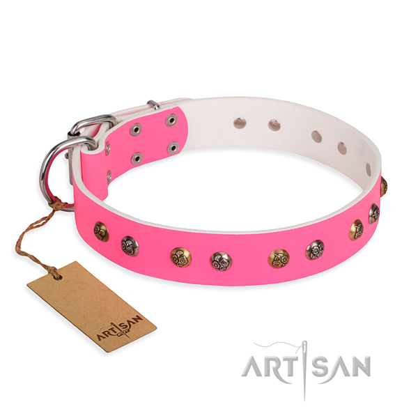 Walking easy adjustable dog collar with strong buckle