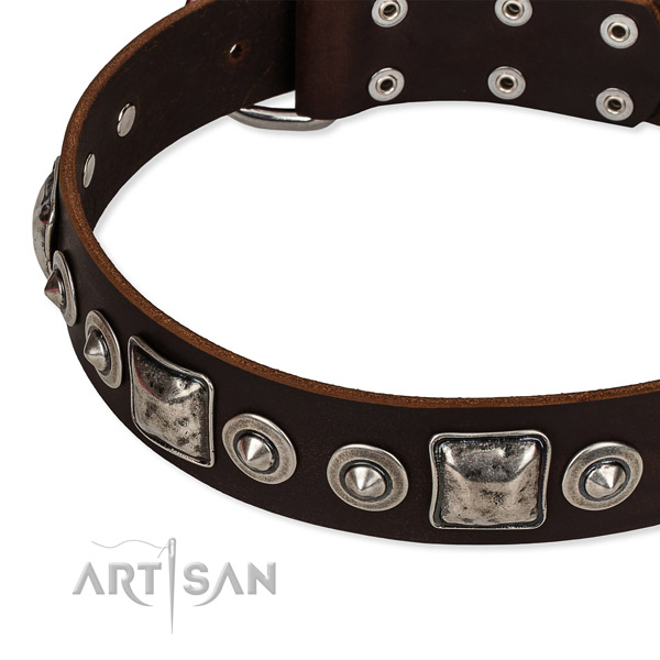 Full grain leather dog collar made of top notch material with embellishments
