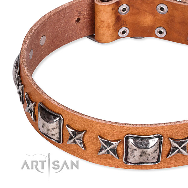 Handy use decorated dog collar of high quality full grain leather