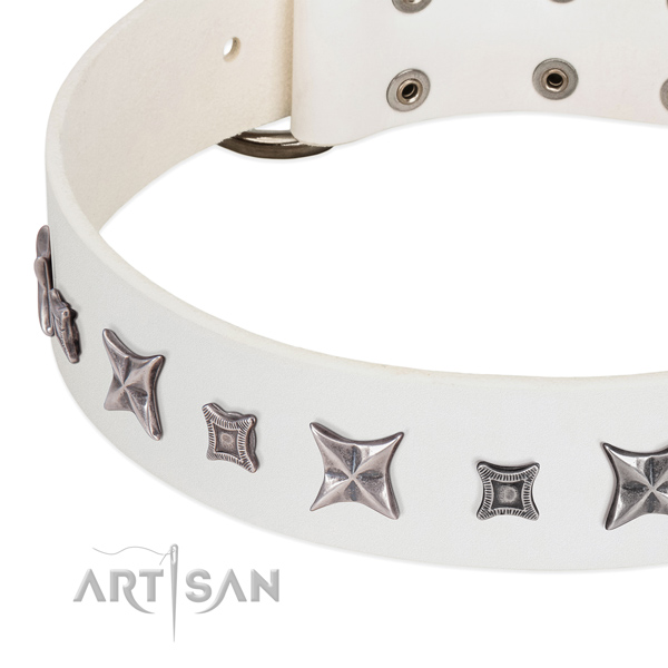 Easy wearing adorned full grain natural leather collar for your pet