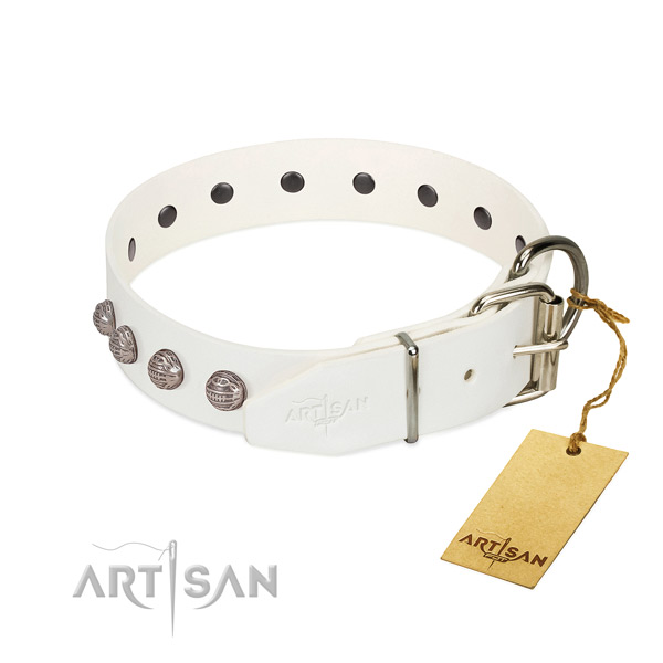 Natural leather dog collar of soft material with exceptional embellishments