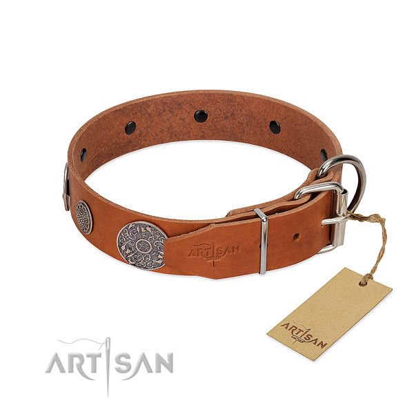 Inimitable full grain natural leather collar for your attractive doggie