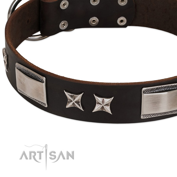 Convenient collar of leather for your handsome dog