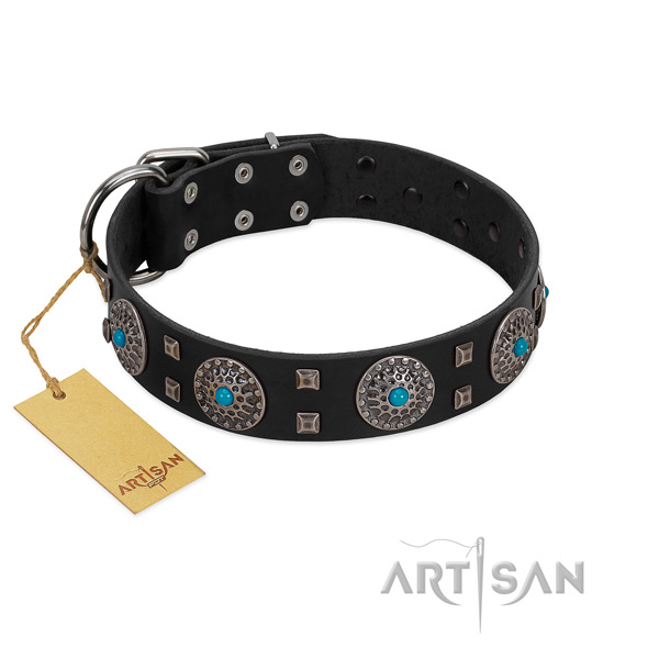Comfy wearing natural leather dog collar with top notch studs