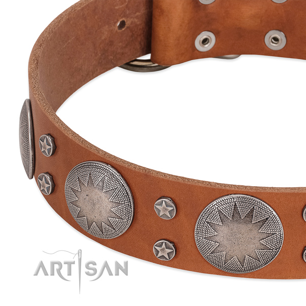 Best quality full grain natural leather dog collar for your handsome dog