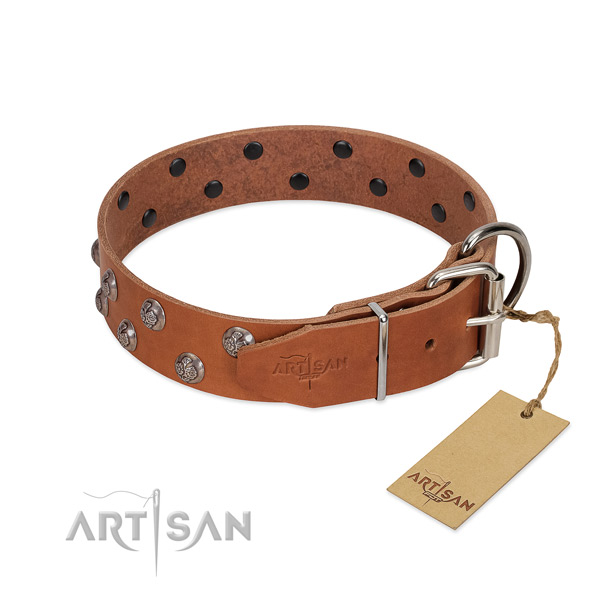 Durable hardware on decorated full grain leather dog collar