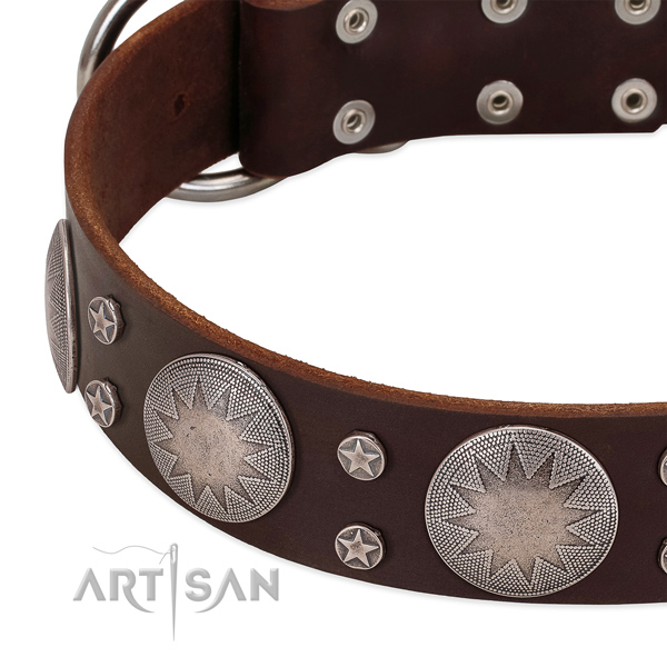 Quality natural leather dog collar with embellishments for your attractive doggie
