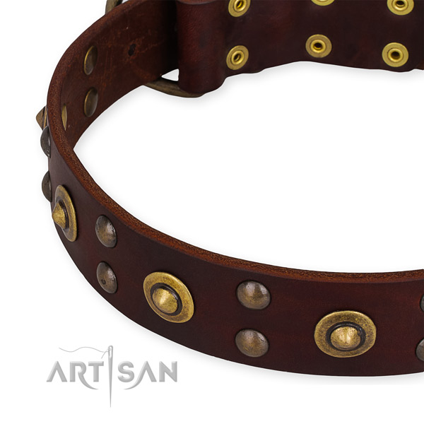 Full grain natural leather collar with corrosion proof buckle for your beautiful doggie