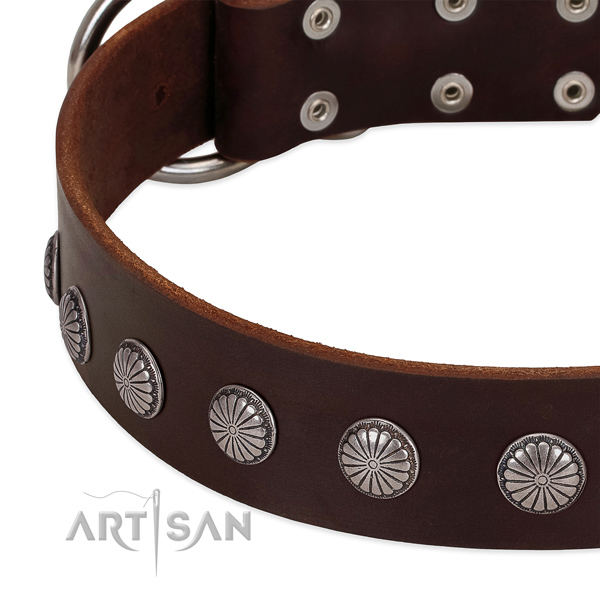 Reliable genuine leather dog collar with decorations for daily walking