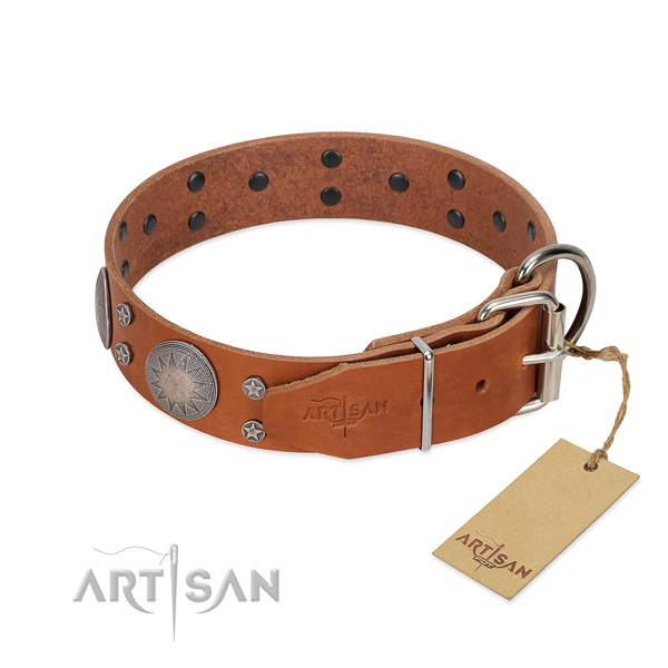 Reliable D-ring on full grain genuine leather dog collar for walking