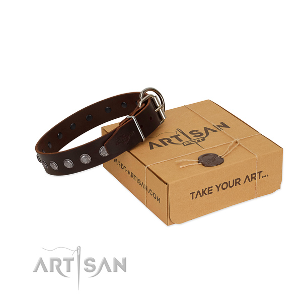 Handy use natural leather dog collar with impressive embellishments