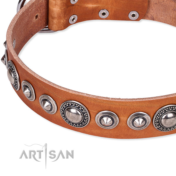 Comfortable wearing adorned dog collar of best quality full grain genuine leather