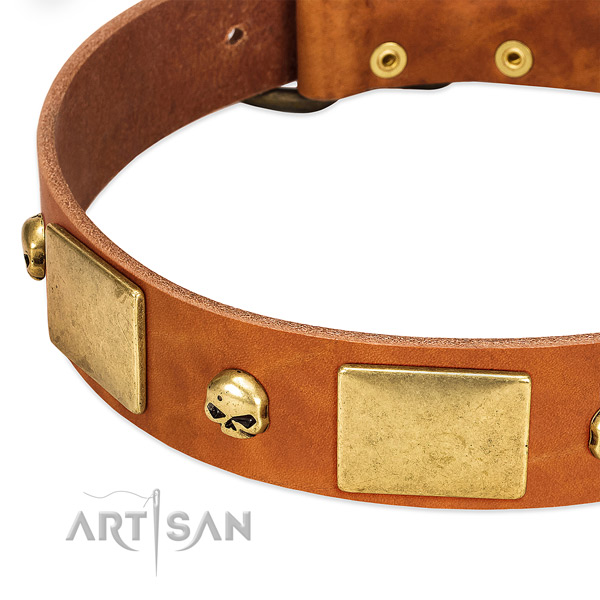 Quality full grain natural leather dog collar with rust-proof traditional buckle