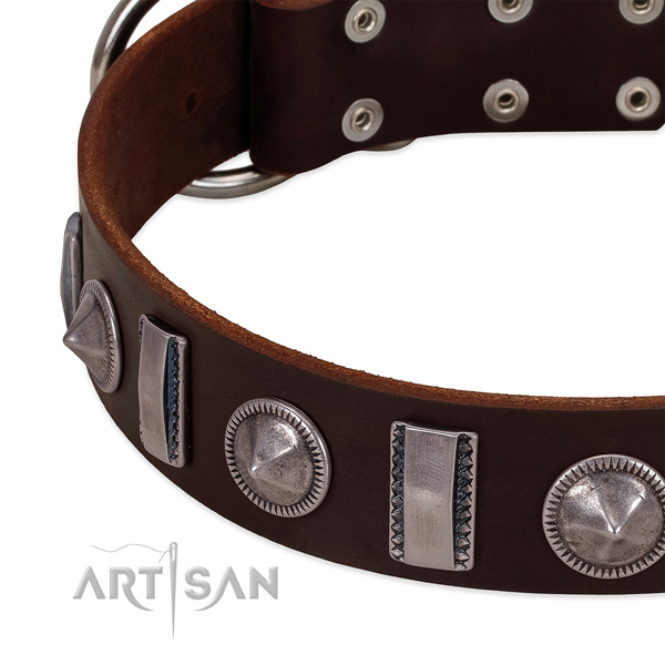 Designer embellished full grain leather dog collar for daily walking