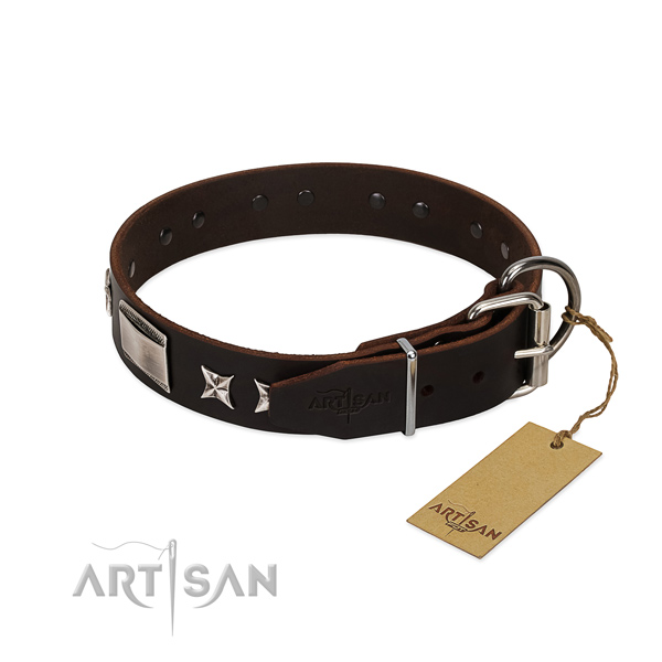 Remarkable collar of full grain natural leather for your impressive doggie