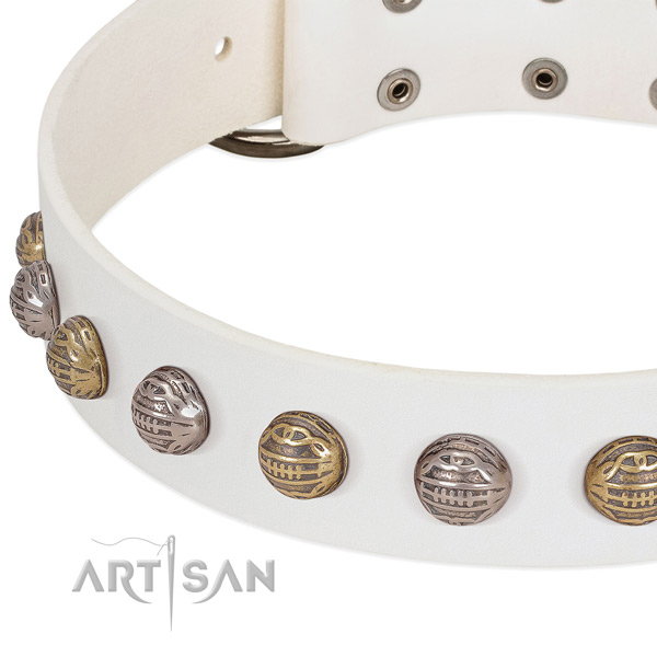 Corrosion resistant fittings on natural genuine leather collar for fancy walking your doggie