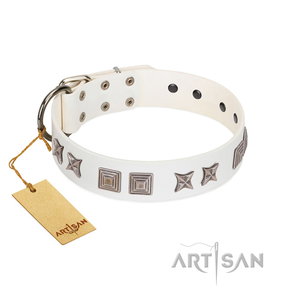 Full grain leather dog collar with unique decorations made canine