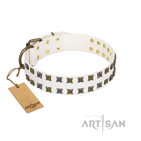 Full grain natural leather collar with top notch embellishments for your canine