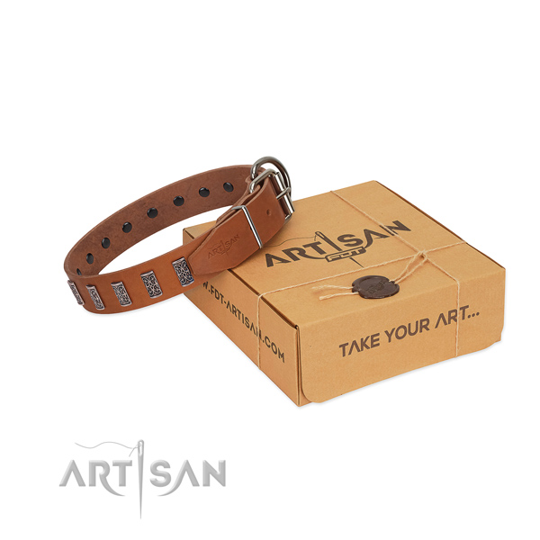 Strong hardware on full grain genuine leather dog collar for stylish walking your four-legged friend