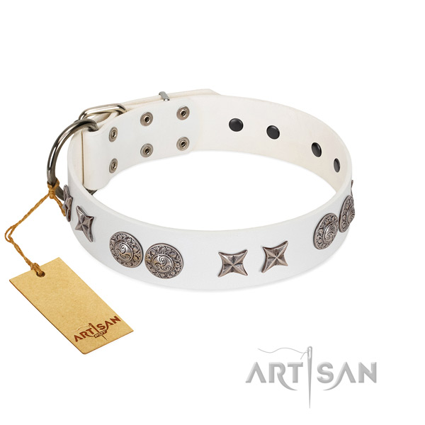Full grain genuine leather collar with incredible embellishments for your dog