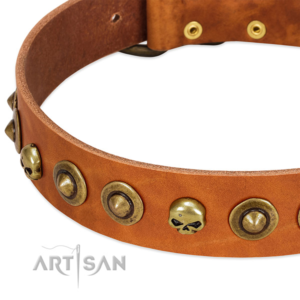 Amazing embellishments on full grain natural leather collar for your canine
