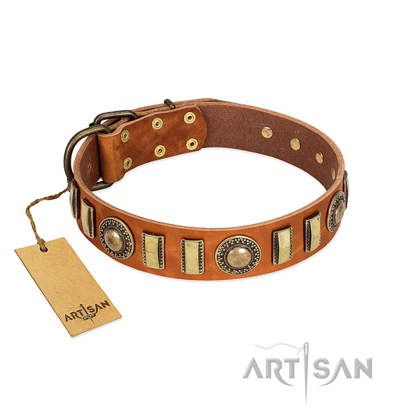 Perfect fit genuine leather dog collar with strong traditional buckle