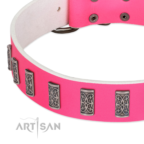 Impressive full grain leather collar for your pet stylish walking