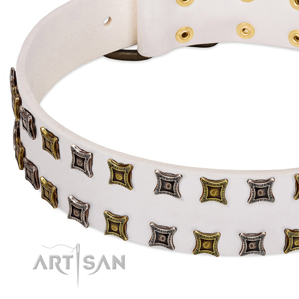 Full grain genuine leather dog collar with decorations for your beautiful canine