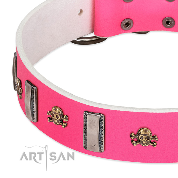 Amazing embellishments on natural leather dog collar for walking