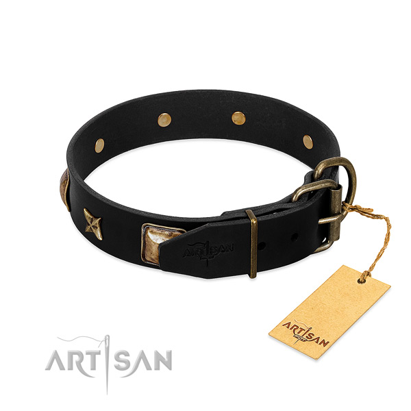 Reliable buckle on genuine leather collar for daily walking your canine