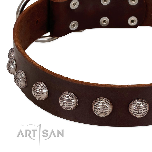 Incredible full grain genuine leather dog collar with durable decorations