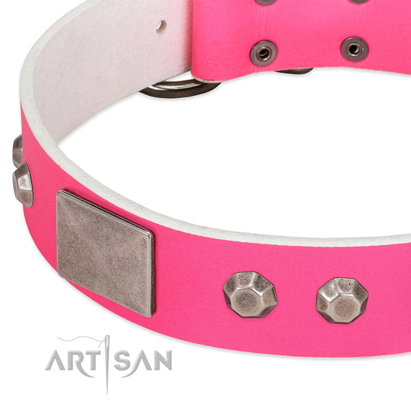 Soft full grain leather dog collar with decorations