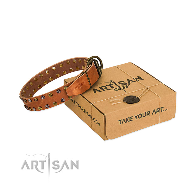 Stylish walking high quality full grain natural leather dog collar with decorations