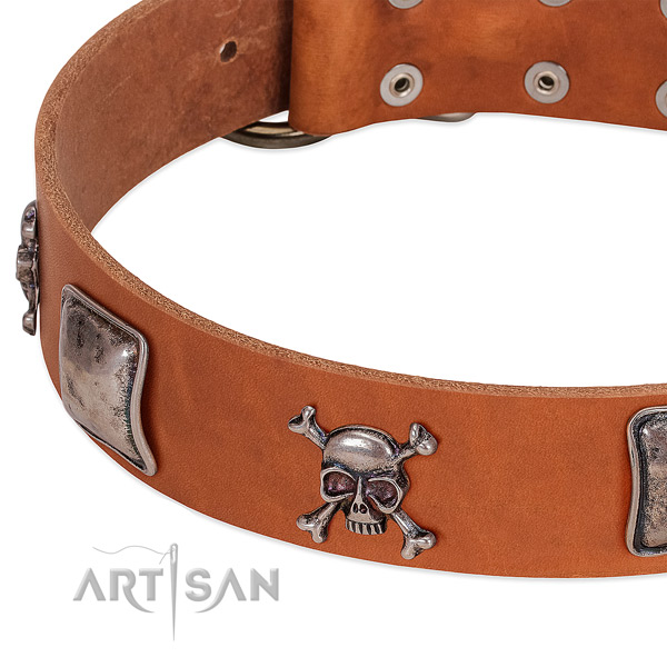 Reliable traditional buckle on leather dog collar